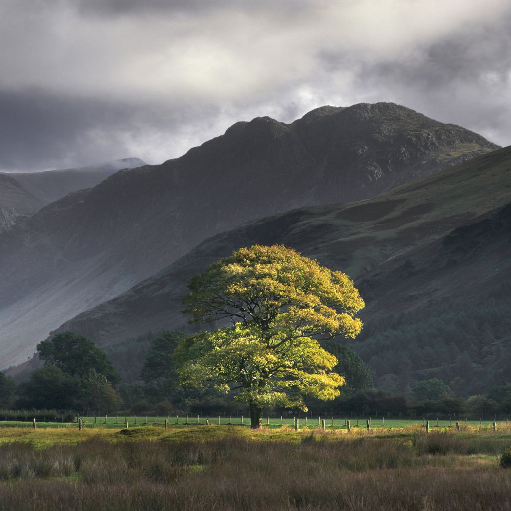 Charlie Waite Photography Tour Tutor Landscape